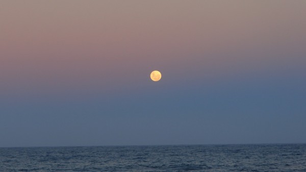 Bright gold moon on pink/blue sky over still sea