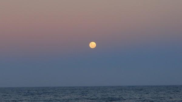 Bright gold moon on pink/blue sky over still sea