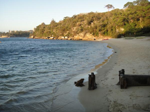 a sandy beach at dusk
