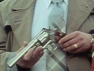 The gun again