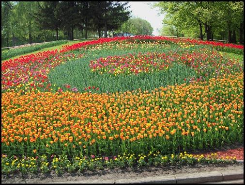 Киев. Выставка весенних цветов на Певческом поле 2011 г.