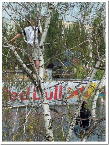Киев.1 Red Bull Flugtag--Зрители на берёзе