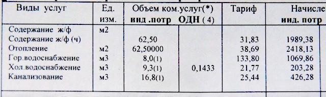 P5155235.JPG