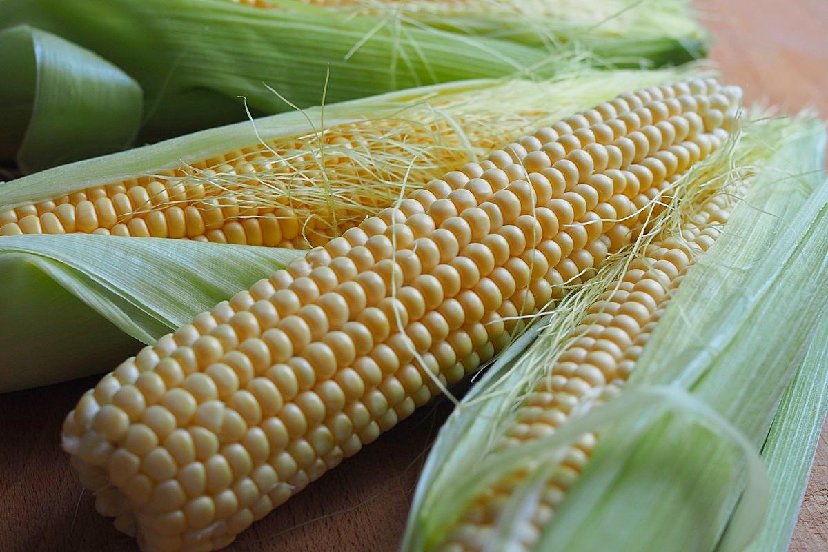 Всем по кукурузе
