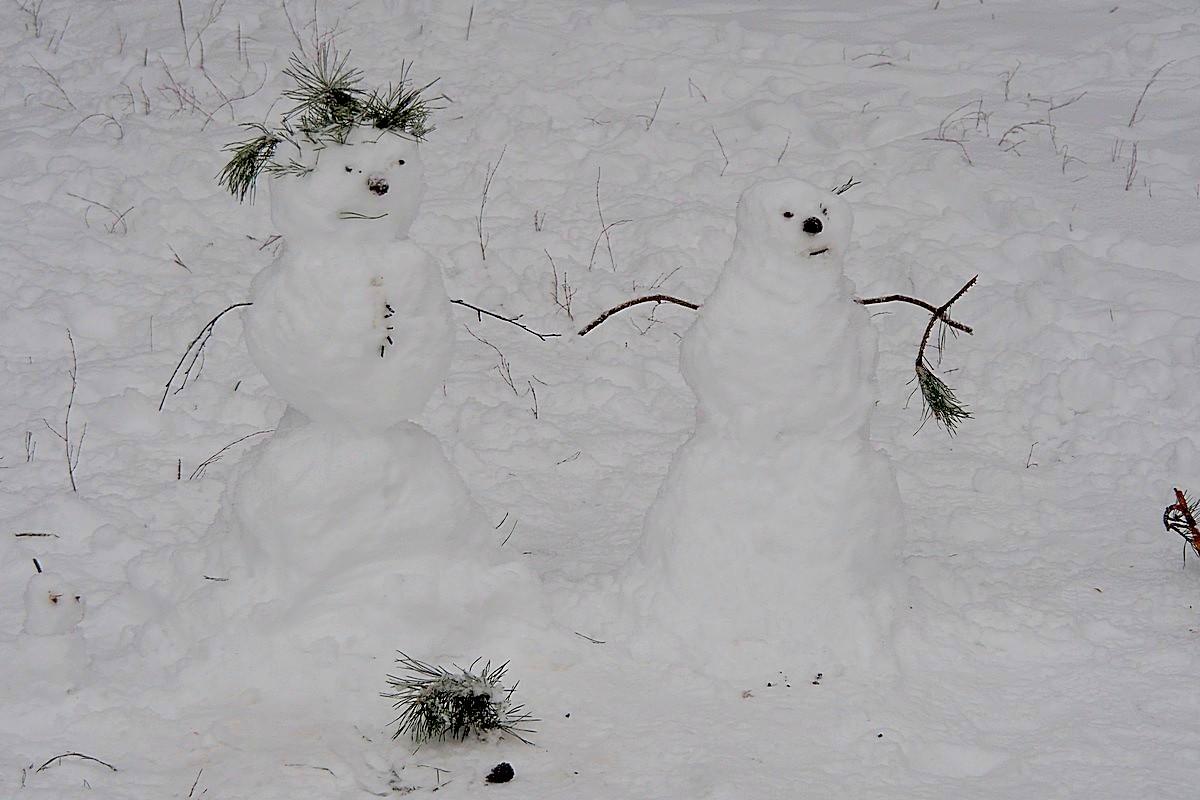 Снежная семья