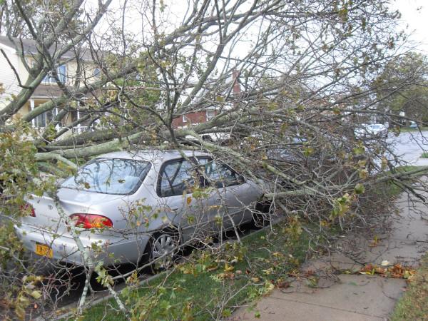 storm  Sandy 006