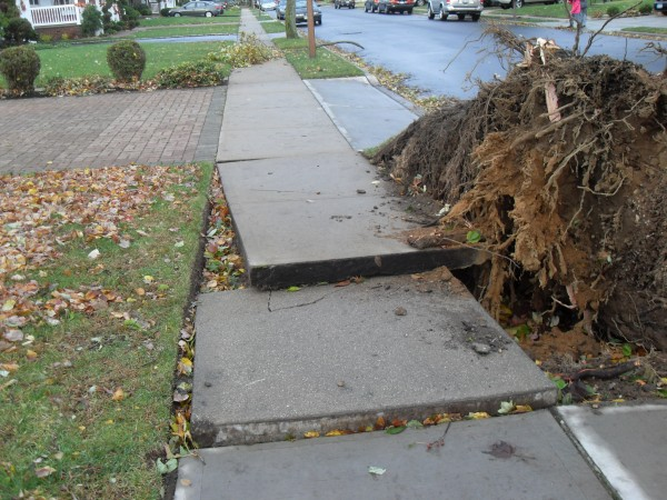 storm  Sandy 016