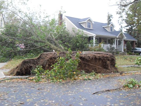 storm  Sandy 022