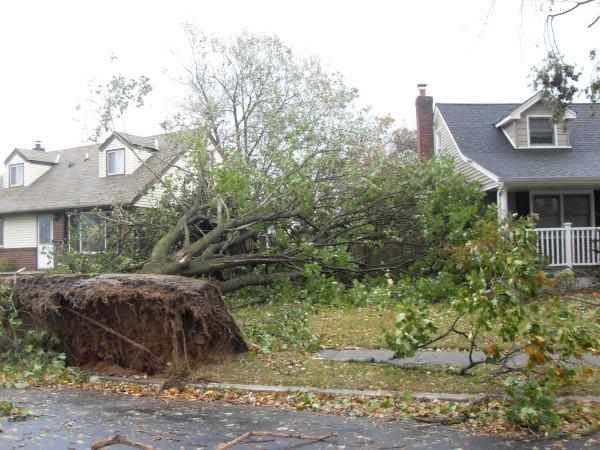 storm  Sandy 024