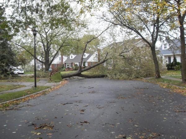 storm  Sandy 025