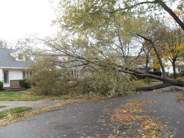 storm  Sandy 027
