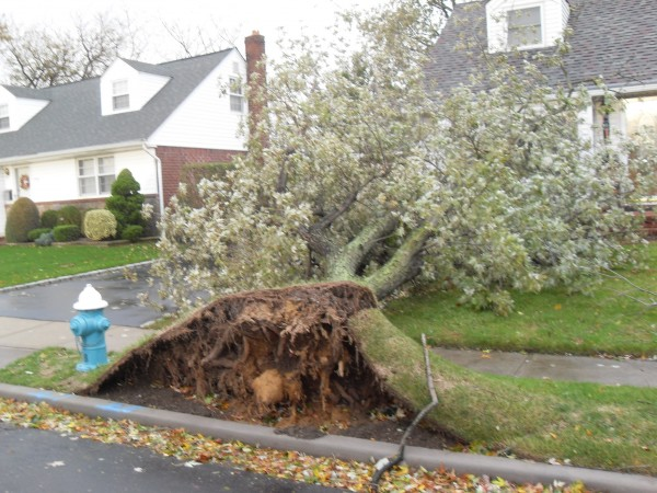 storm  Sandy 029