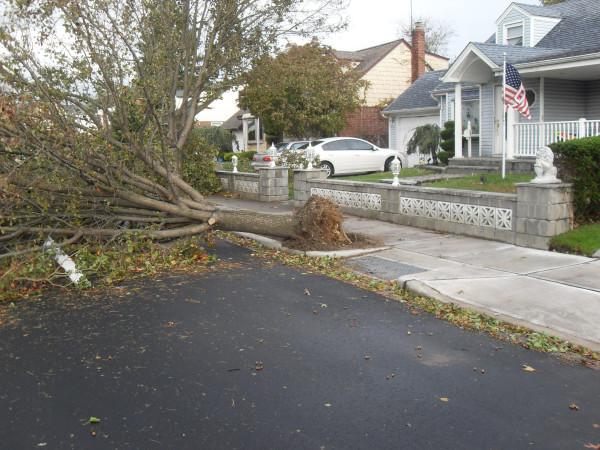 storm  Sandy 054