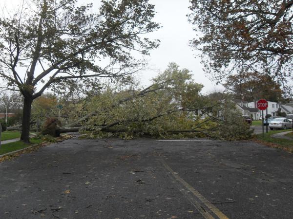 storm  Sandy 065