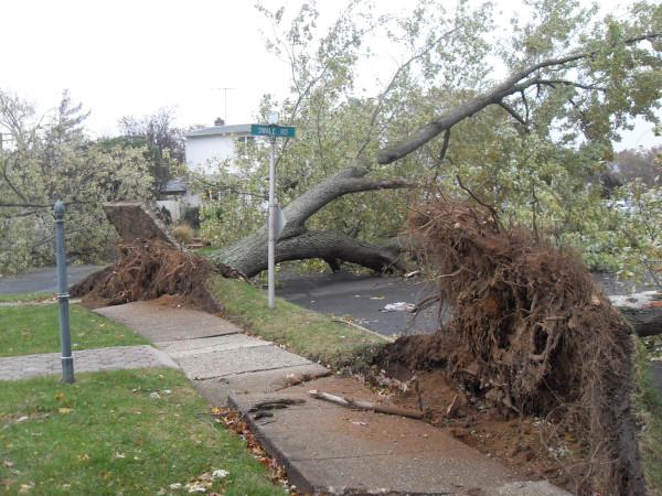 storm  Sandy 066