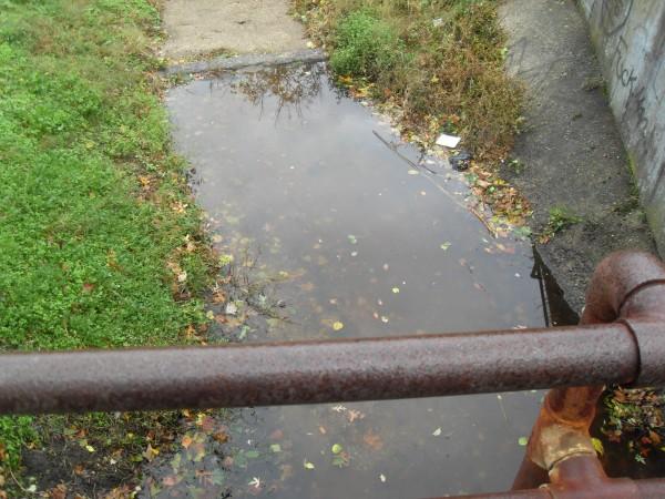 storm  Sandy 072