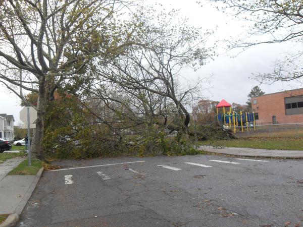 storm  Sandy 073