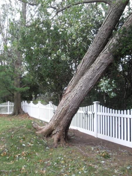 storm  Sandy 083