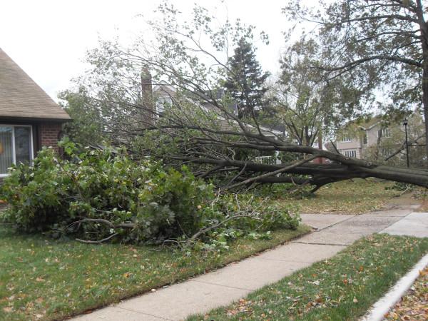 storm  Sandy 087