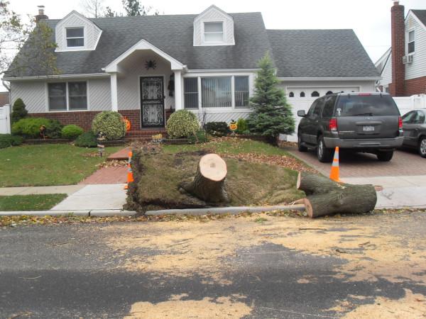 storm  Sandy 088