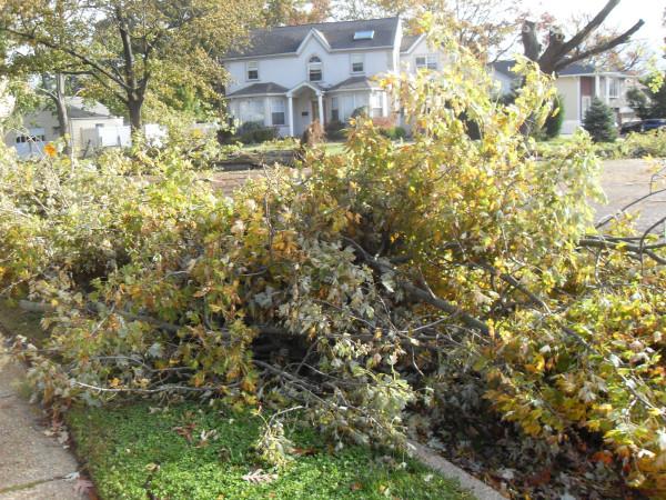 storm  Sandy 095