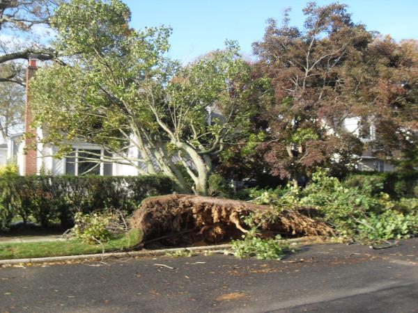 storm  Sandy 097