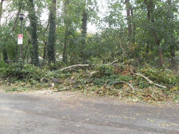 storm  Sandy 105