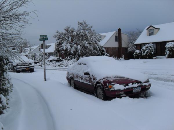 снежное утро 008