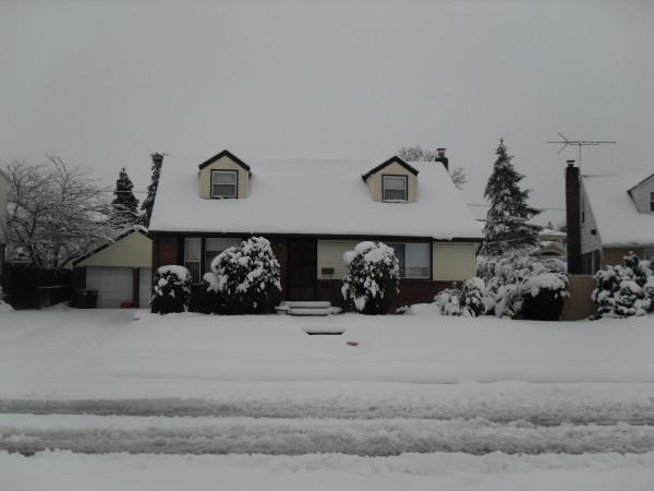 снежное утро 028
