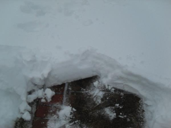 снежное утро 030