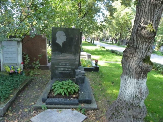 Мясниковы Новодевичем кладбище