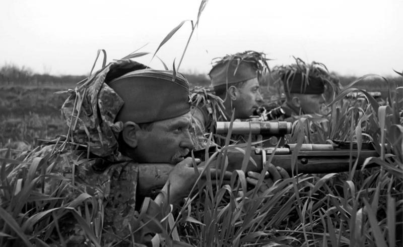 sniper_merkulov_43.biuhhpiv7jswggs8w00s48okc.ejcuplo1l0oo0sk8c40s8osc4.th