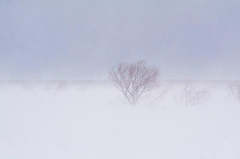 камчатский буран