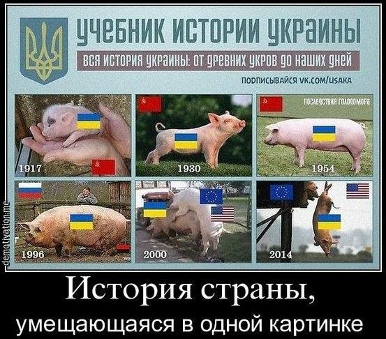без свинов