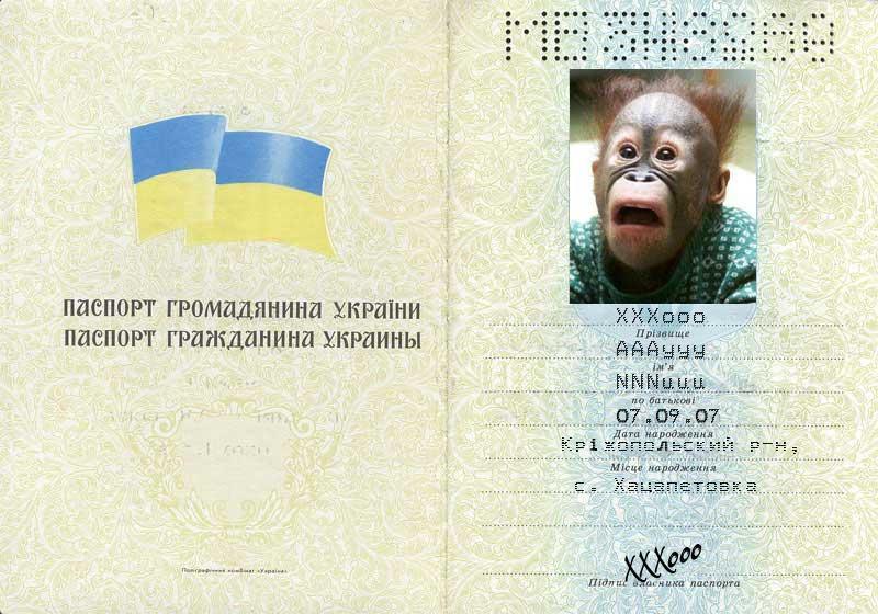 скачать паспорт украины шаблон