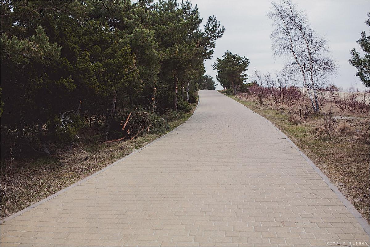 По Куршской косе на велосипеде. Нида-Юодкранте-Нида. 012-IMG_0699