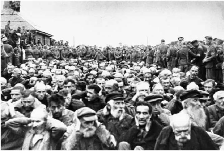Холокост в Житомире евреев, августа, Житомира, Житомир, расстреляно, сентября, живых, около, евреи, гетто, населения, 19415, последние, оккупационные, власти, провели, регистрацию, еврейского, зарегистрировано, Судный