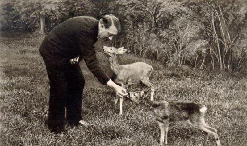 Они любили животных, но ненавидели людей животных, животным, правовой, нацистском, ноябре, наименьшей, степени, нацистской, вивисекцииГуманность, запрет, проявлялась, нацистами, евреям, цыганам, недочеловекам, унтерменшам, гуманный, другим, благодарили, приветствовали