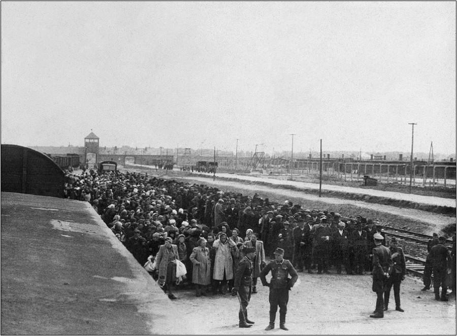 История в фотографиях. Освенцимский альбом.