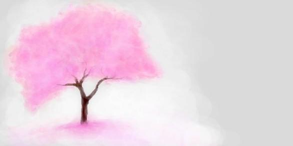 розовое-дерево