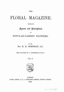 Страницы из The_Floral_magazine-2