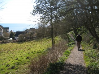 Path to Cadgwith