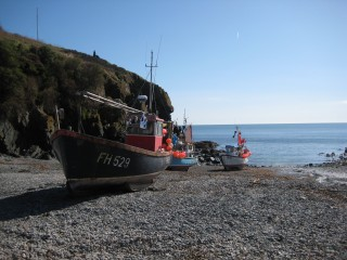 Boats at Cadgwith