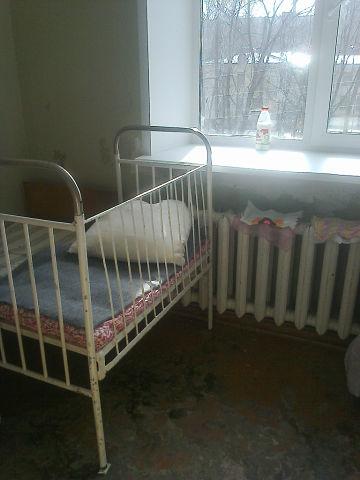 Детские поликлиники 11 свао москвы