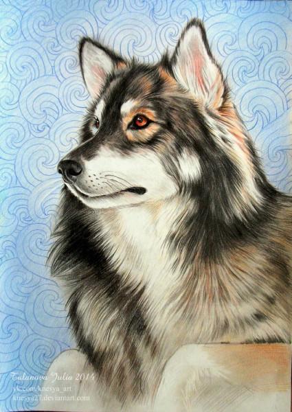 wolf-talanova-julia