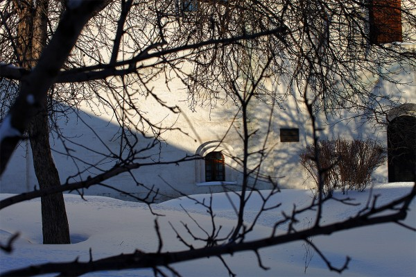 Андронников зимой_03_1