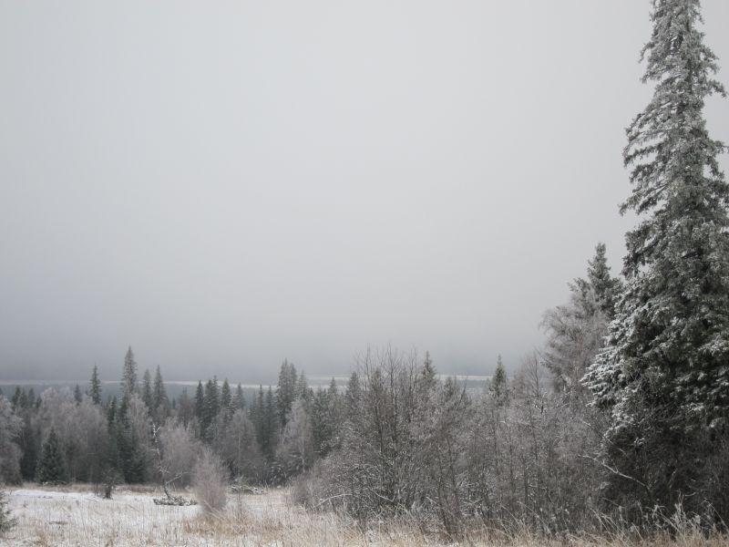 Фото 165