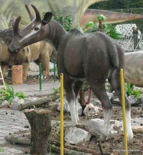 Антилопа чудо-зверь
