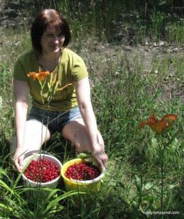 Лисс и вишня.
