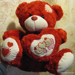 Любимый медведь!